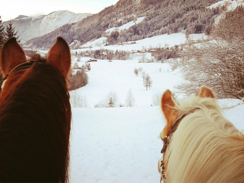 ausreiten im Winter