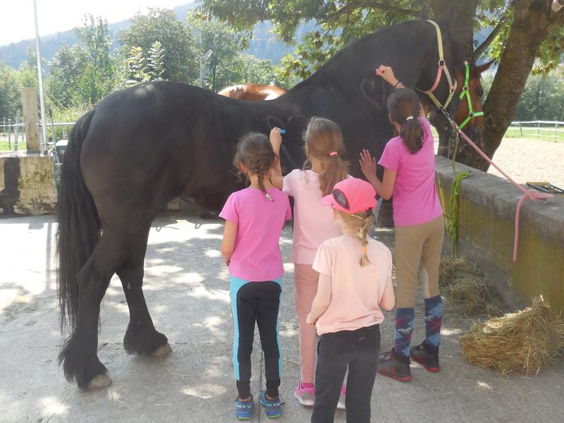 Das Pferdebemalen ist jedes Jahr ein Highlight beim Sommercamp