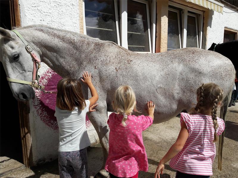 Pferde waschen