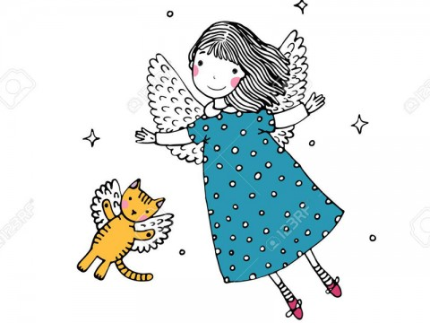 Auch Katzen fliegen mit den Engeln